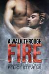 A Walk Through Fire - Felice Stevens