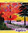 Beginning and Intermediate Algebra Value Pack (Includes Beginning and Intermediate Algebra Worksheets for Classroom or Lab Practice & Mymathlab/Mystat - Margaret L. Lial, John Hornsby, Terry McGinnis