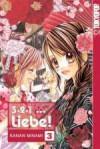 3 2 1 ... Liebe! Bd. 3 - Kanan Minami