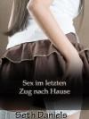 Sex im letzten Zug nach Hause: Eine reife Frau, junger Mann Erotikfantasie (German Edition) - Seth Daniels