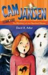 The Mystery at the Haunted House - David A. Adler, Susanna Natti