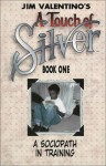 Touch of Silver Book 1 - Jim Valentino
