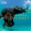Wild Planet: Celebrating Wildlife Photographer of the Year - Natural History Museum