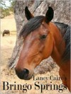 Bringo Springs - Laney Cairo