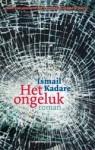 Het ongeluk - Ismail Kadaré, Roel Schuyt