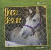 Horse Rescue - Katie Marsico