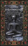 Celtic Mythology: The Nature and Influence of Celtic Myth, from Druidism to Arthurian Legend - Ward Rutherford