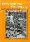 Thirty Years Into Yesterday: A History of Archaeology at Grasshopper Pueblo - J. Jefferson Reid, Stephanie Whittlesey
