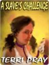 A Slave's Challenge - Terri Pray