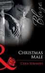 Christmas Male (Mills & Boon Blaze) (Uniformly Hot! - Book 13) - Cara Summers