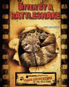 Bitten by a Rattlesnake - Sue L. Hamilton