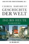 Geschichte der Welt 1945 bis heute: Die globalisierte Welt (German Edition) - Akira Iriye, Jürgen Osterhammel, Andreas Wirthensohn, Thomas Atzert
