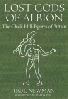 Lost Gods of Albion: The Chalk Hill Figures of Britain - Paul Newman, Tim Darvil
