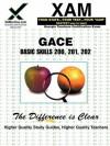 GACE Basic Skills 200, 201, 202 - Sharon Wynne