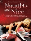 Naughty and Nice: A Holiday Romance Collection - Jaci Burton, Shannon Stacey, Angela James, Lauren Dane, Megan Hart