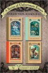 A Series of Unfortunate Events Collection: Books 10-13 - Brett Helquist, Lemony Snicket