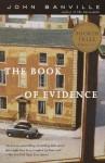 The Book of Evidence (Vintage International) - John Banville