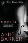 The Dark Side: Darkening - Ashe Barker