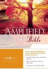 Amplified Bible Large Print, Purple Silver Gilding Jmm - Anonymous