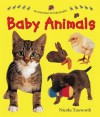 Say and Point Picture Boards: Baby Animals - Nicola Tuxworth