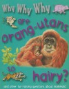 Why Why Why Are Orangutans So Hairy? - Mason Crest Publishers