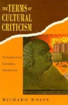 The Terms of Cultural Criticism: The Frankfurt School, Existentialism, Poststructuralism - Richard Wolin