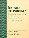 Juvenile Delinquency: Historical, Theoretical and Societal Reactions to Youth - Paul M. Sharp, Barry W. Hancock
