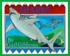 Sharks - Gail Gibbons