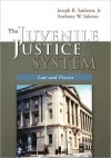 The Juvenile Justice System: Law and Process Includes an Interactive Student Study Guide on CD - Joseph B. Sanborn Jr.