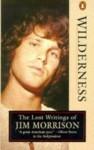 Wilderness: The Lost Writings of Jim Morrison, Volume 1 - Jim Morrison