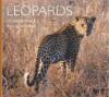 Leopards - Cyndi Gamble, Cyndi Gamble, Rodney Griffiths