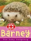 Barney: The Baby Hedgehog - Tina Nolan