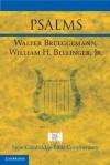 Psalms - Walter Brueggemann, W.H. Bellinger Jr.