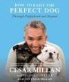 How to Raise the Perfect Dog: Through Puppyhood and Beyond (Audio) - Melissa Jo Peltier, Cesar Millan