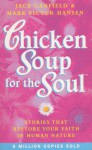 Chicken Soup For The Soul: 101 Stories to Open the Heart and Rekindle the Spirit - Jack Canfield