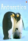 Antarctica (Usborne Beginners) - Lucy Bowman
