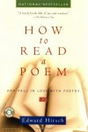 How to Read a Poem: And Fall in Love with Poetry (Harvest Book) - Edward Hirsch