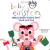 What Does Violet See? Sand and Sea (Baby Einstein) - Julie Aigner-Clark, Nadeem Zaidi