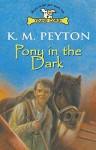 Pony In The Dark - K.M. Peyton