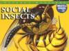 Social Insects - Jonathan Sutherland, Chris McNab