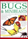Bugs and Minibeasts - Barbara Taylor, Jen Green