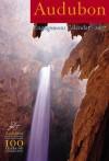 CALENDAR: Audubon Engagement Diary Calendar 2007 - NOT A BOOK