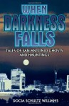 When Darkness Falls: Tales of San Antonio Ghosts and Hauntings - Docia Schultz Williams