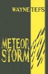 Meteor Storm - Wayne Tefs