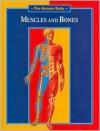 Muscles and Bones - Andreu Llamas
