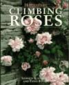 Climbing Roses - Stephen Scanniello, Tania Bayard