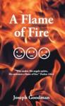 A Flame of Fire - Joseph Goodman