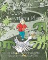 Mystery of the Sasyrifera Plant - Cheryl Henry Hodgetts, Valerie Bouthyette