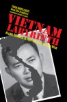 Vietnam Labyrinth: Allies, Enemies, and Why the U.S. Lost the War - Tran Ngoc Chau, Ken Fermoyle, Daniel Ellsberg