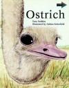 Ostrich South African Edition - Tony Seddon, Seddon Tony